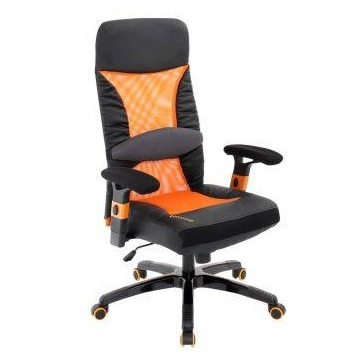 Choose An Ergonomic Desk Chair With Lumbar Support