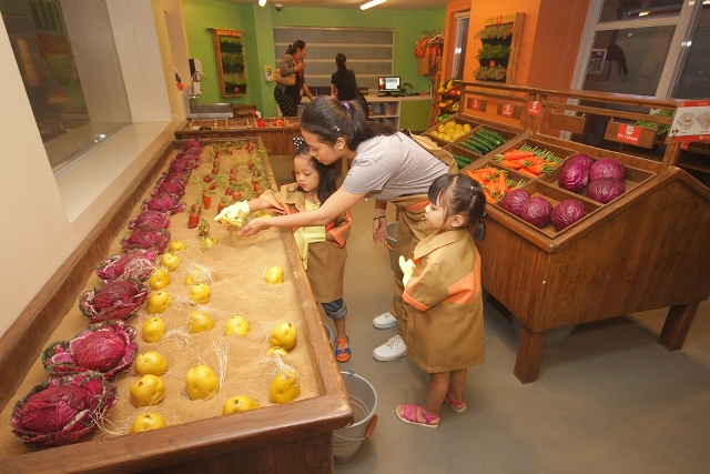 KidZania Farm House Store
